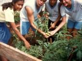 Fotos de 1997